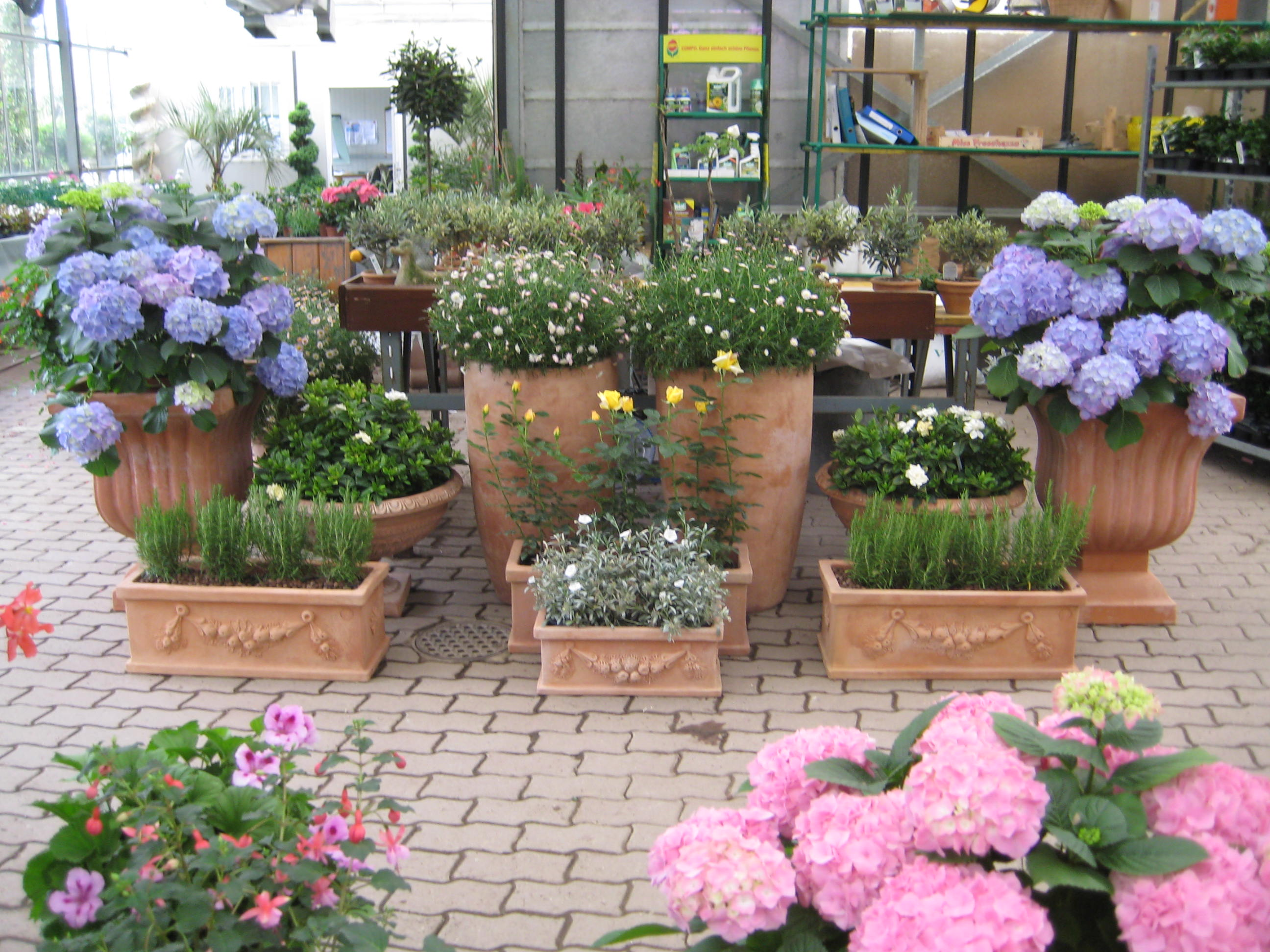 Grano giardini blog archive vasi impruneta for Vasi terracotta prezzi